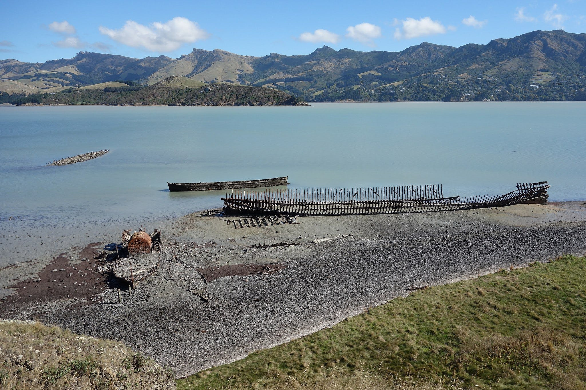 quail island christchurch activities
