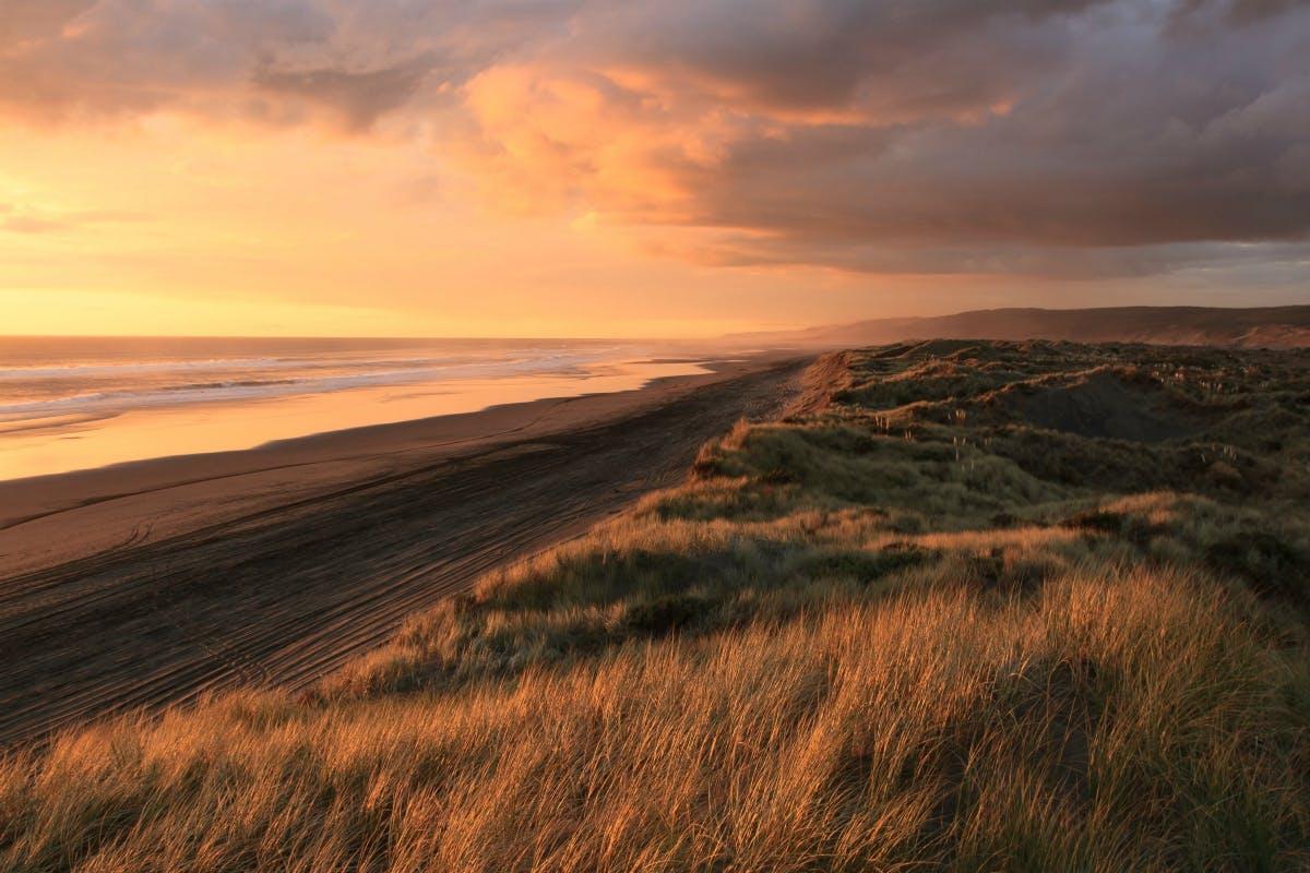 best auckland sunsets
