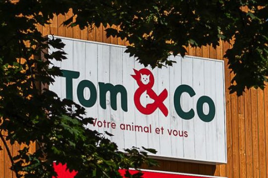 Tom & Co overview-10 years of collaboration.