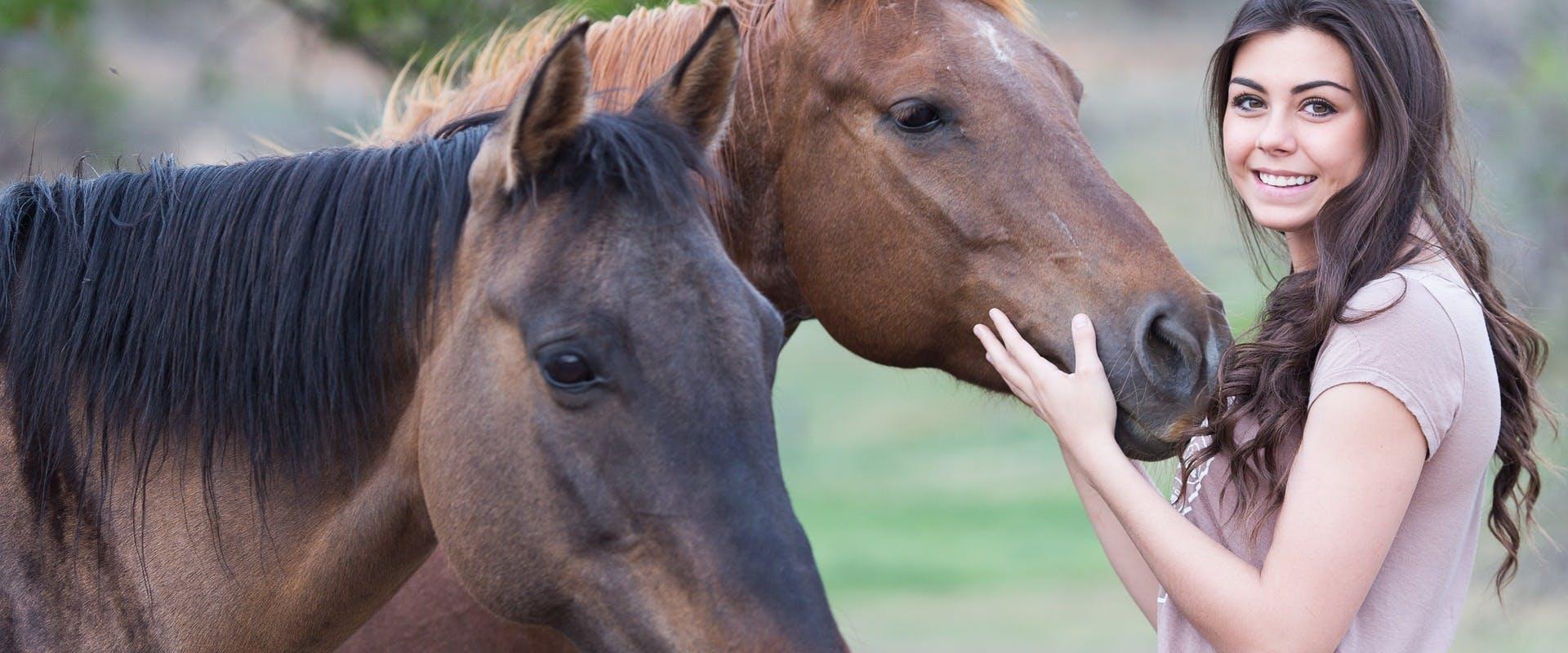 1541693775 horses 19962851920
