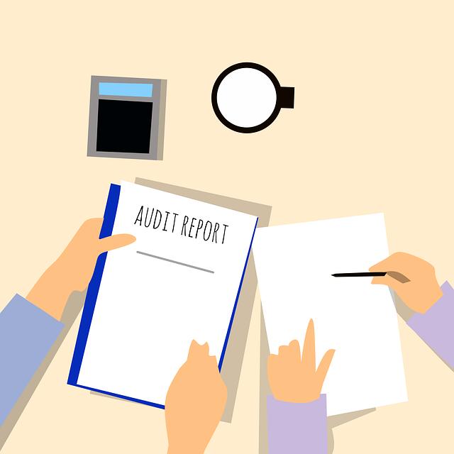 audit graduate scheme