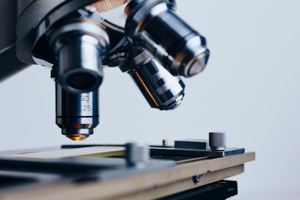jobs for biology majors
