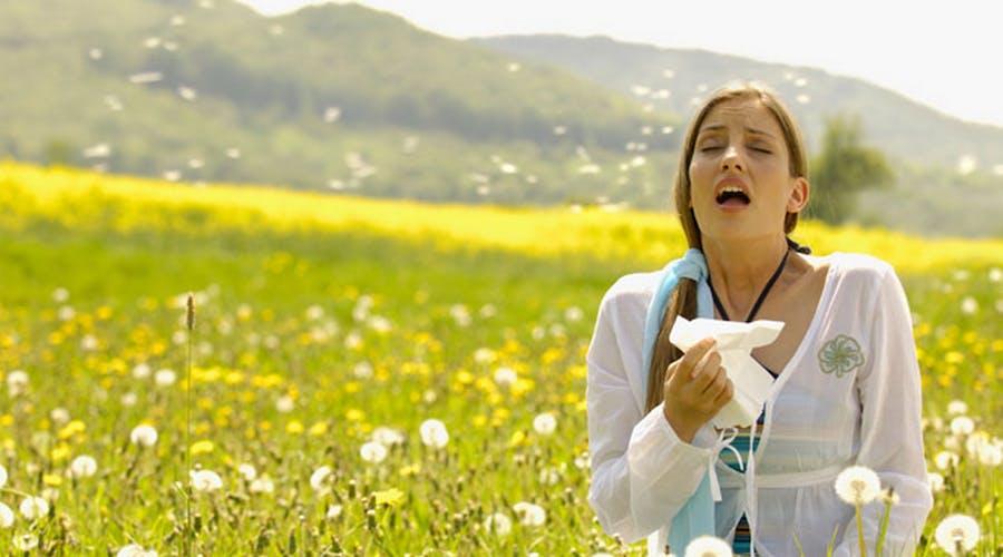 1617809626 cosa sai sulle allergie di primavera