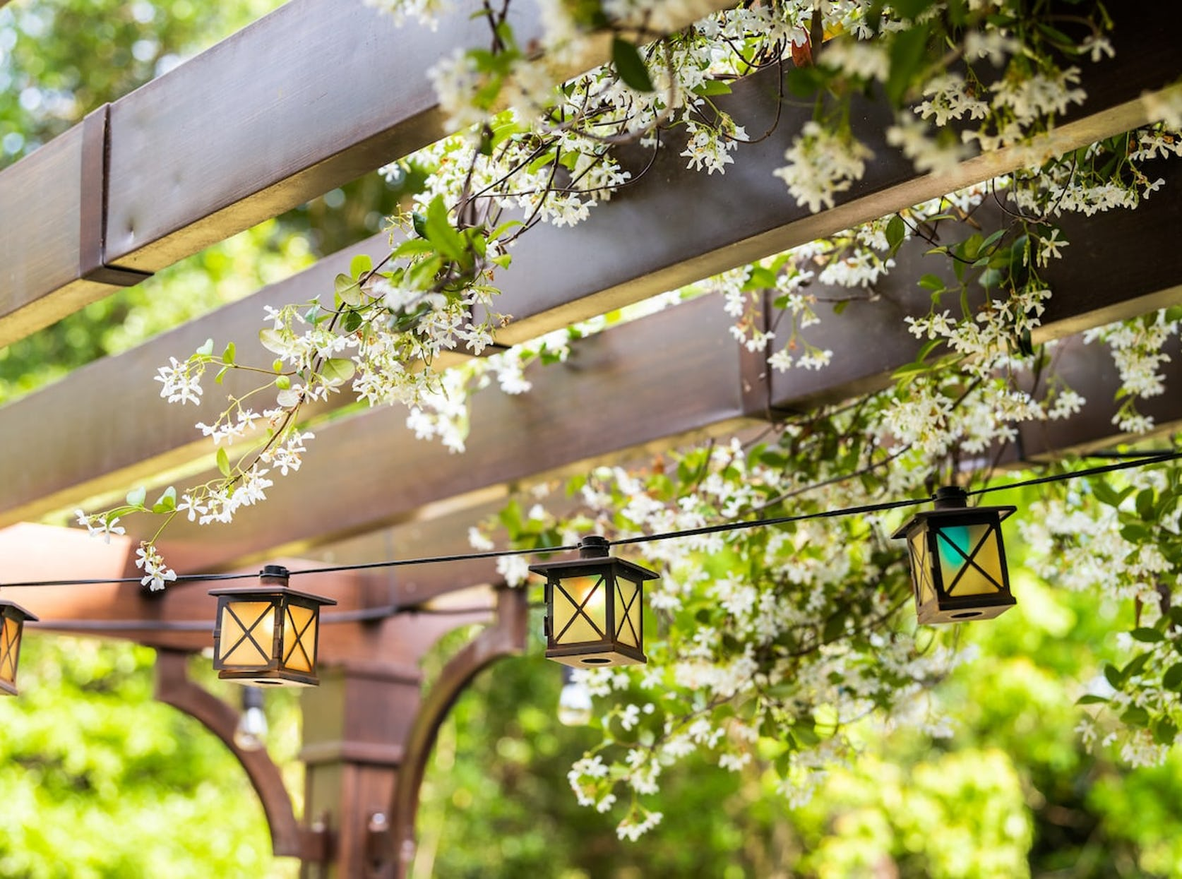 lanternes suspendues dans jardin