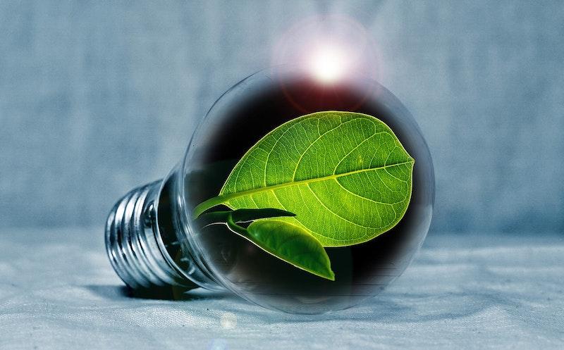 1565310998 energy economy