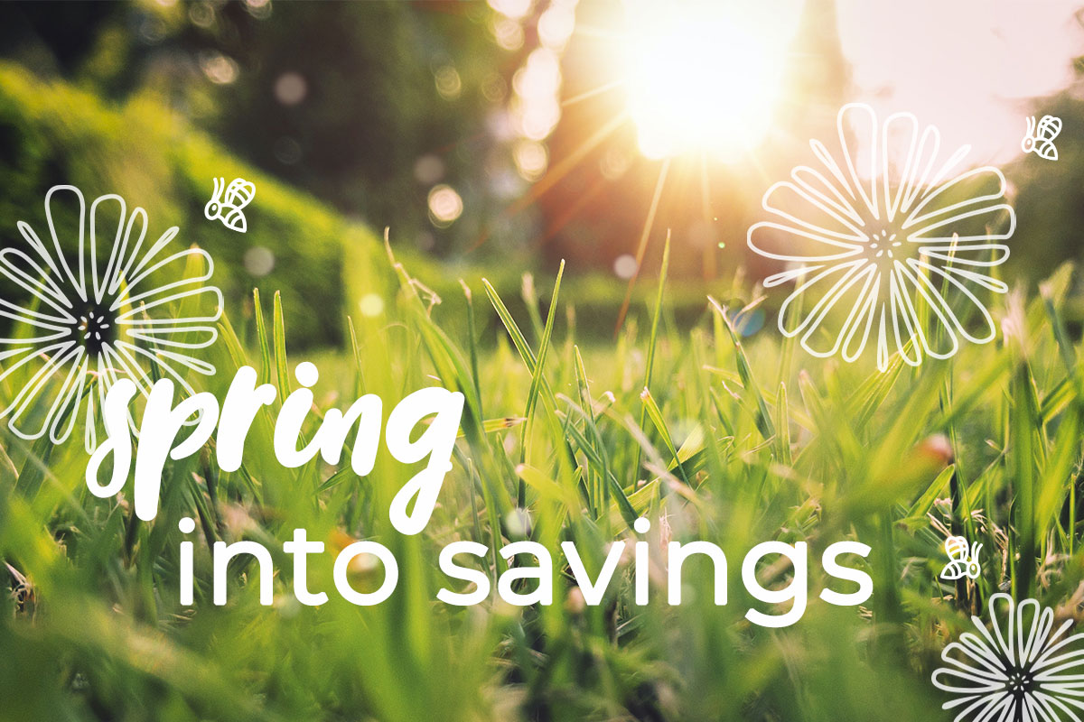 Spring into savings with these top tips for reducing energy consumption