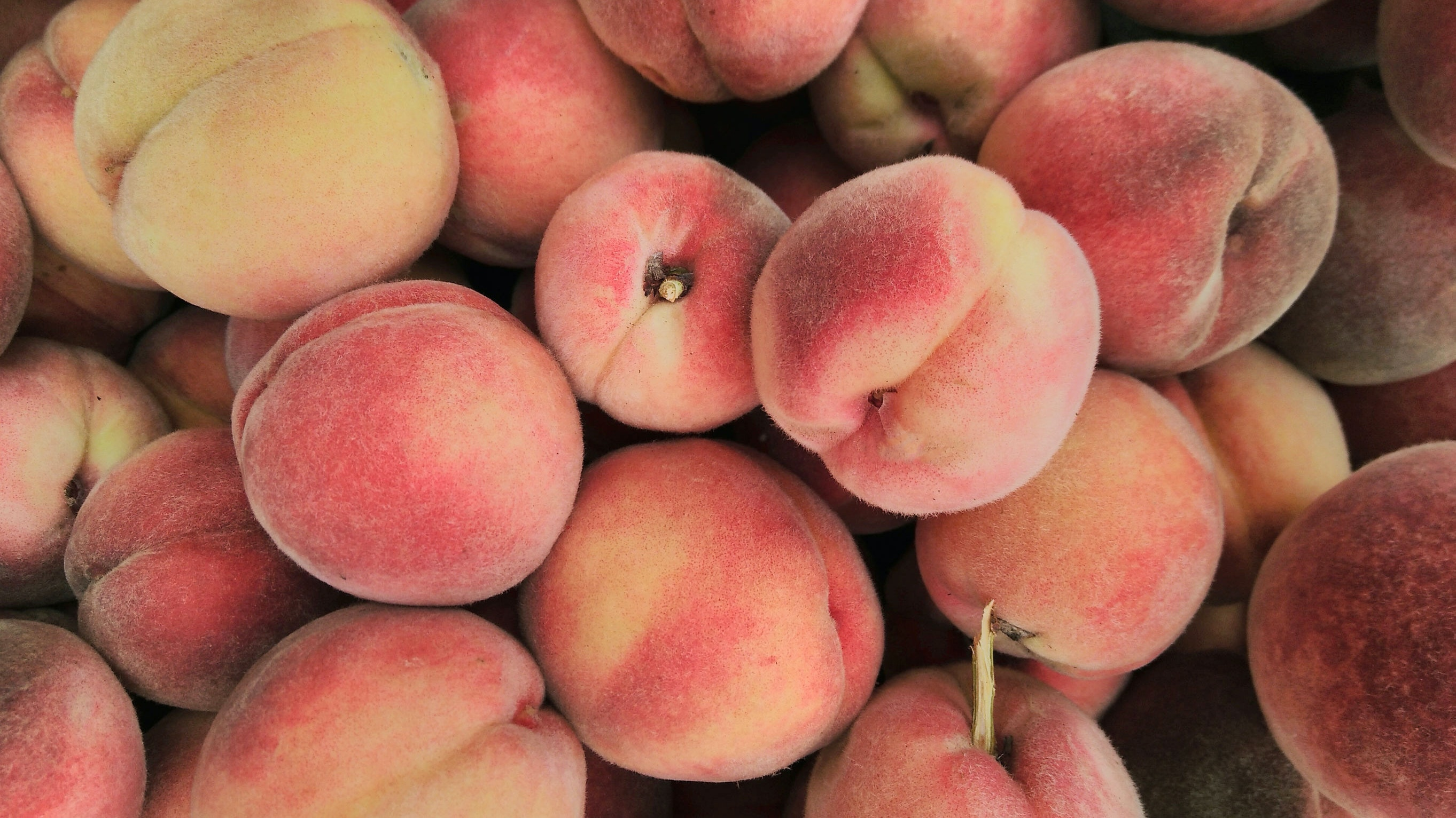 You Might Want to Start Incorporating Peaches into Your Beauty Routine