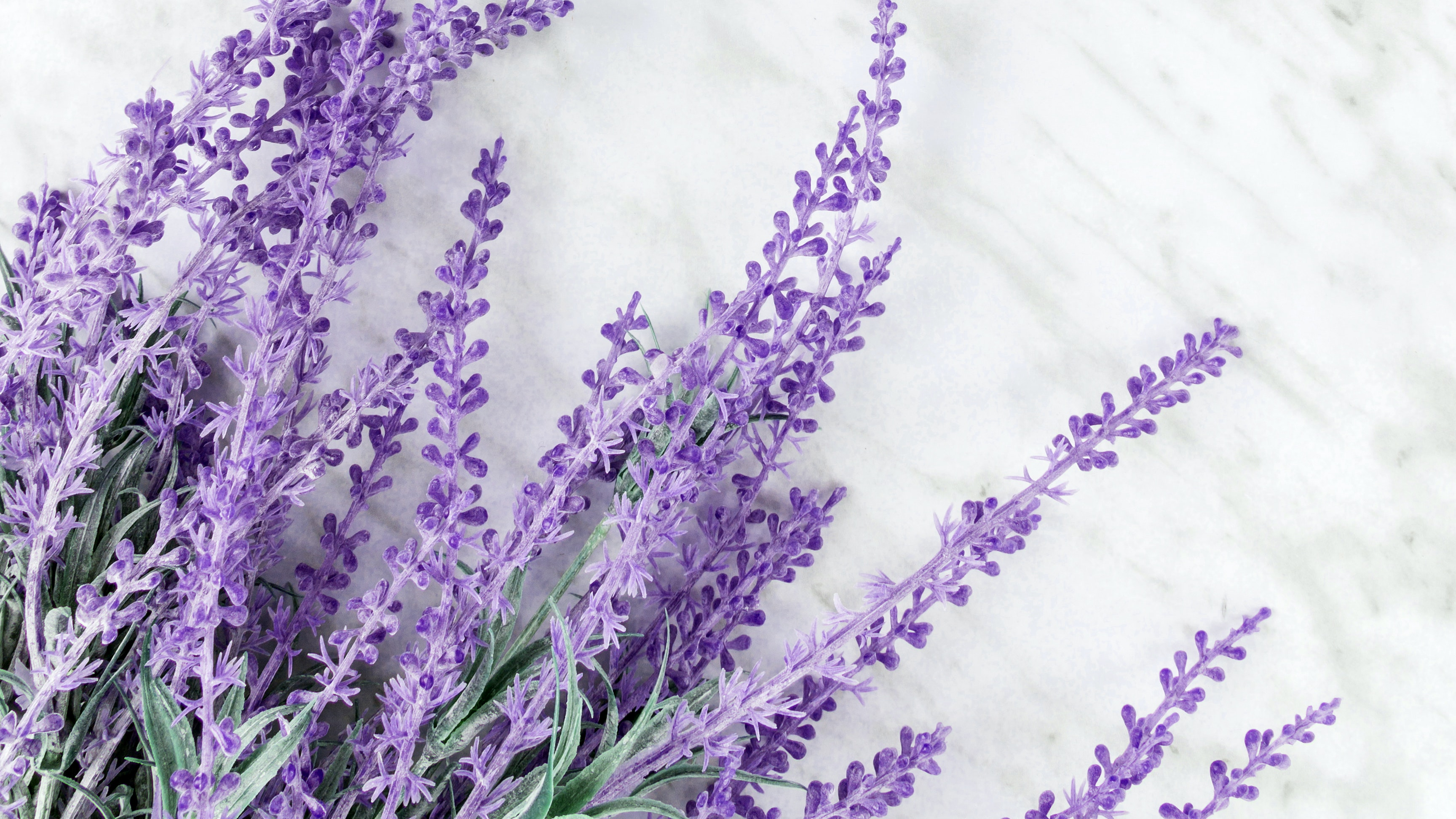 Lavender Oil Skincare Benefits