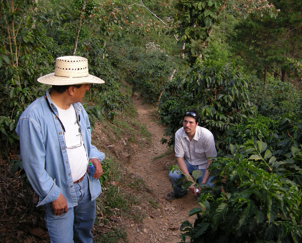 Guatemala and Finca Vista Hermosa Trip 2008 pt 1