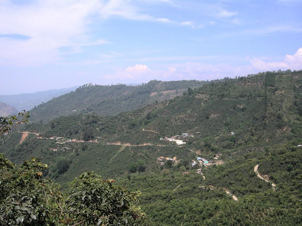 Guatemala and Finca Vista Hermosa Trip 2008 pt 2