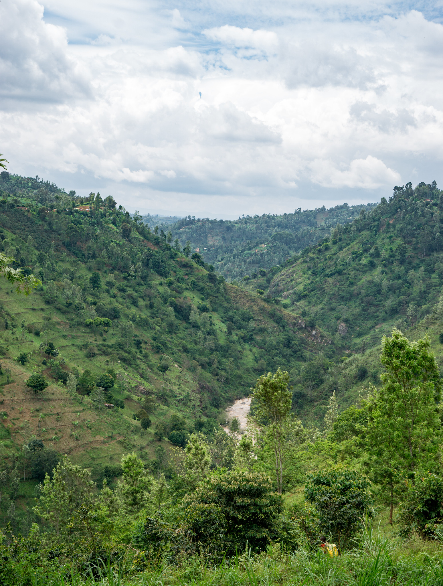 Stunning views all around the hilly Nyeri region