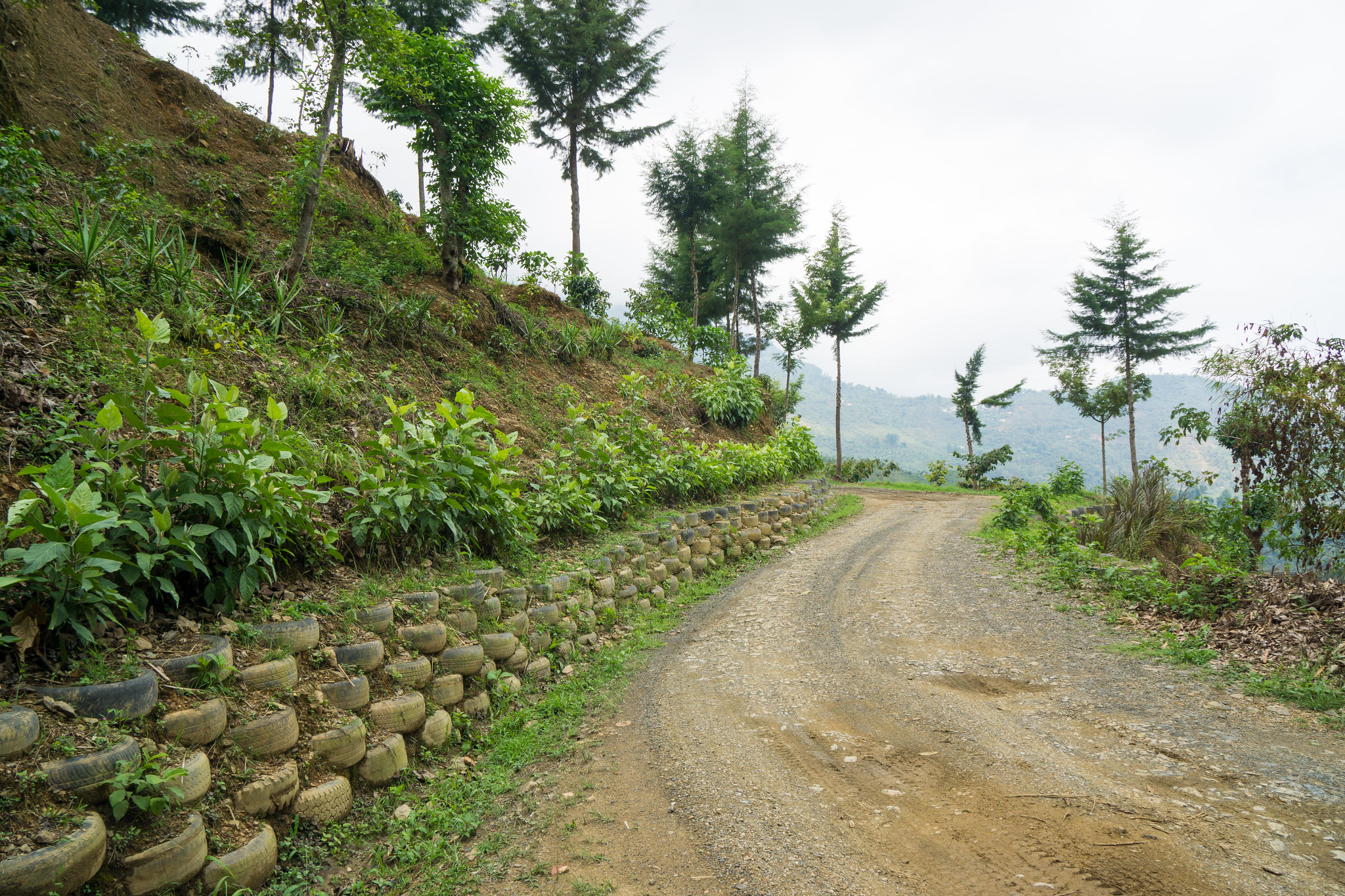 The Road to Finca Vista Hermosa.  Tires reused as road protection