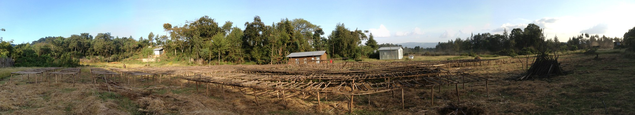 Panorama of Yukro wet mill, lots of drying tables - still waiting to put up the last ones.