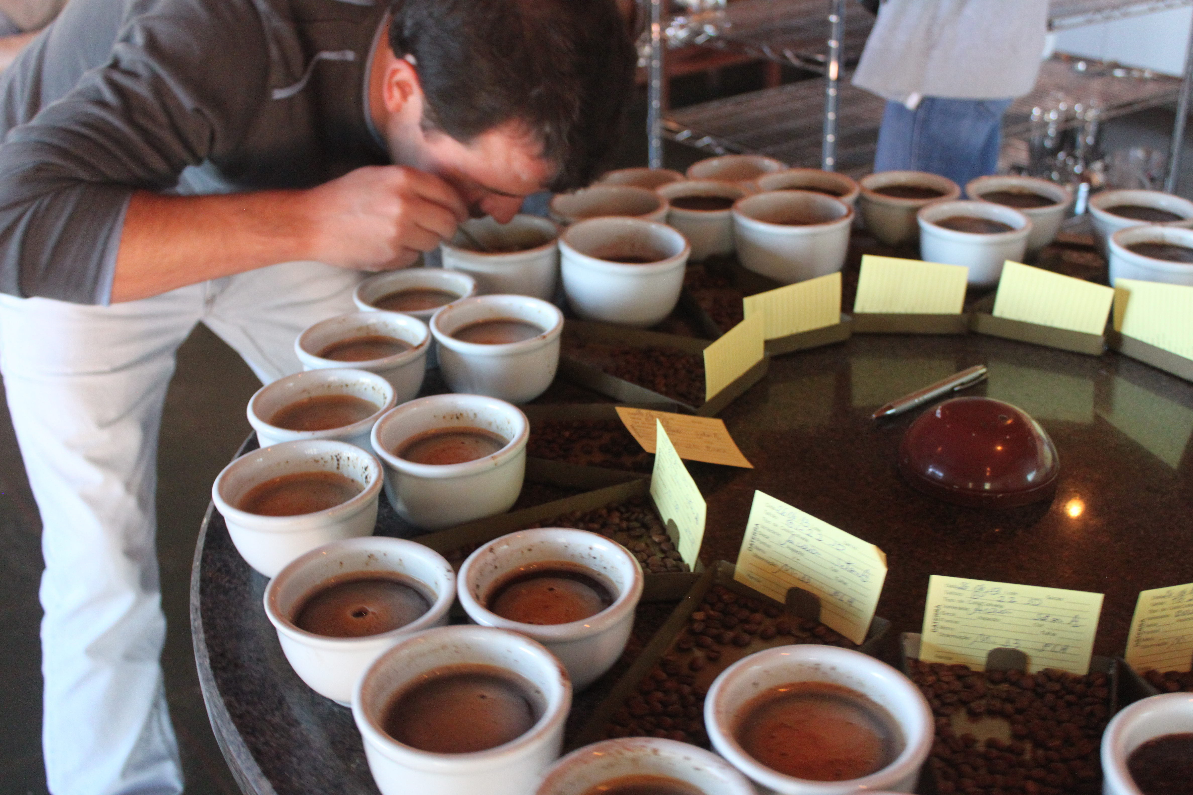 Carlinhos cupping preharvest samples