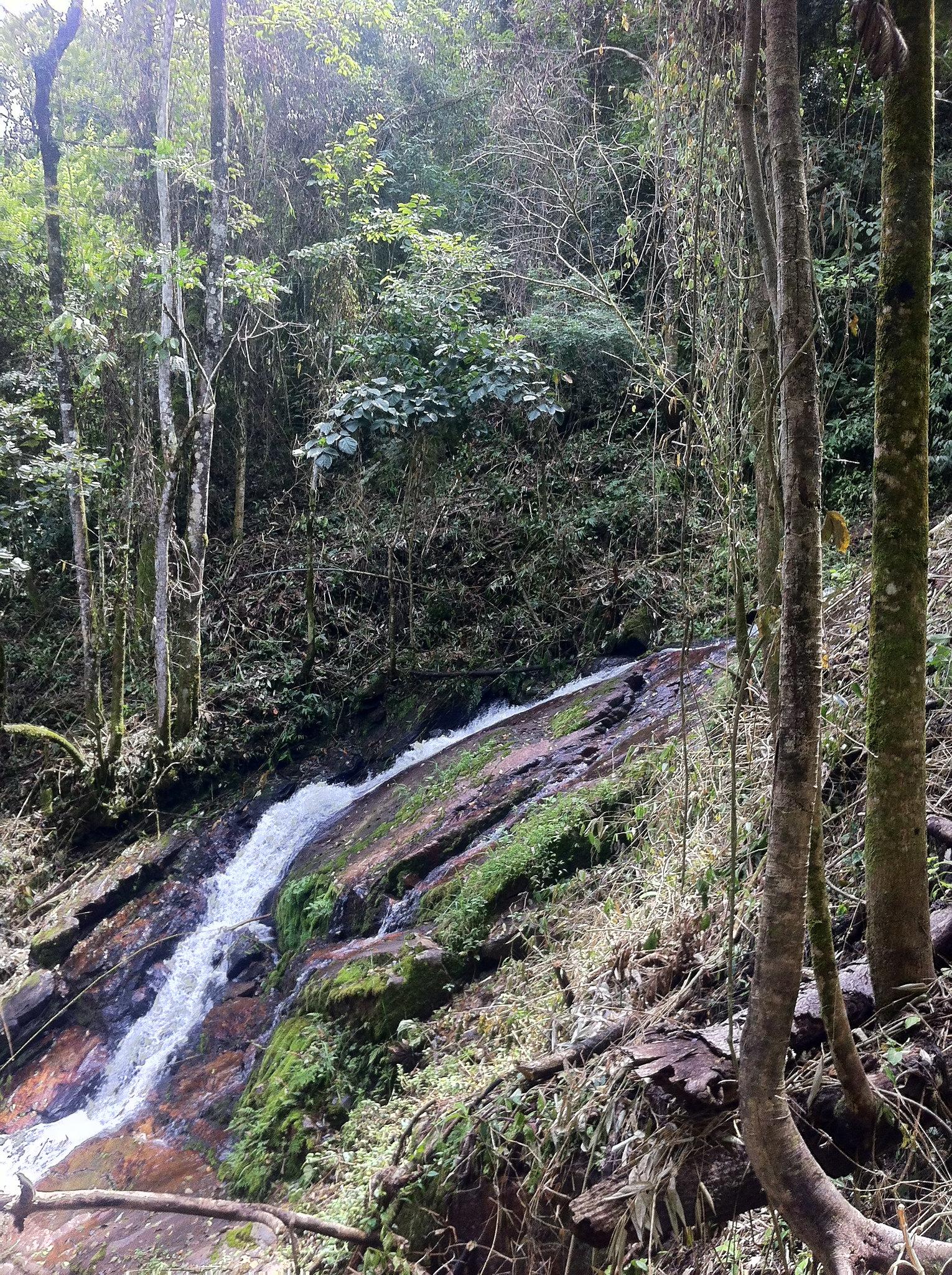 hidden stream.