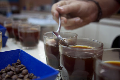 FVH cupping.