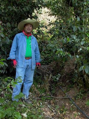 Finca Vista Hermosa, Huehuetenango, Guatemala Part 2