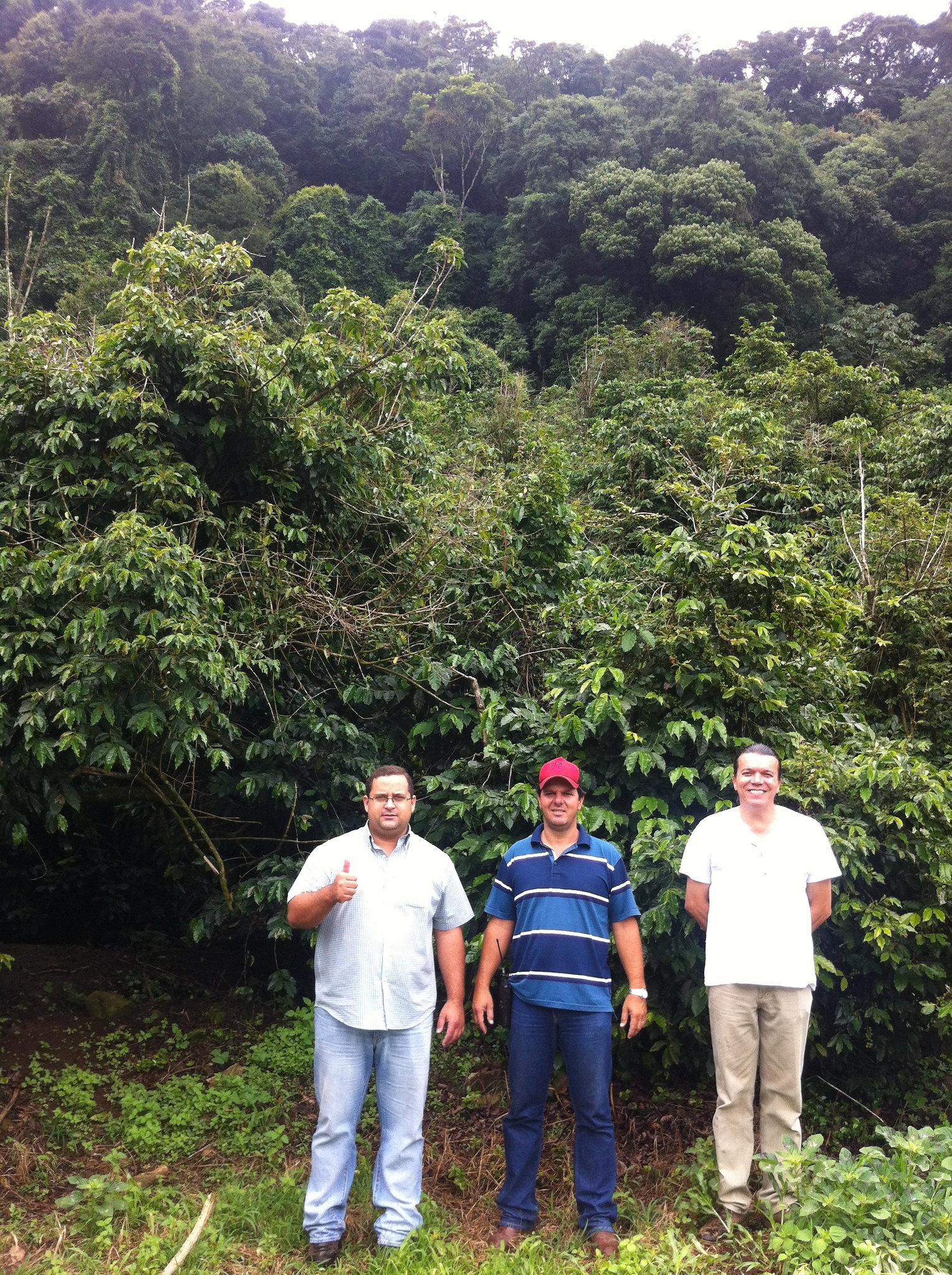 Rodrigo, Nilton, Julio