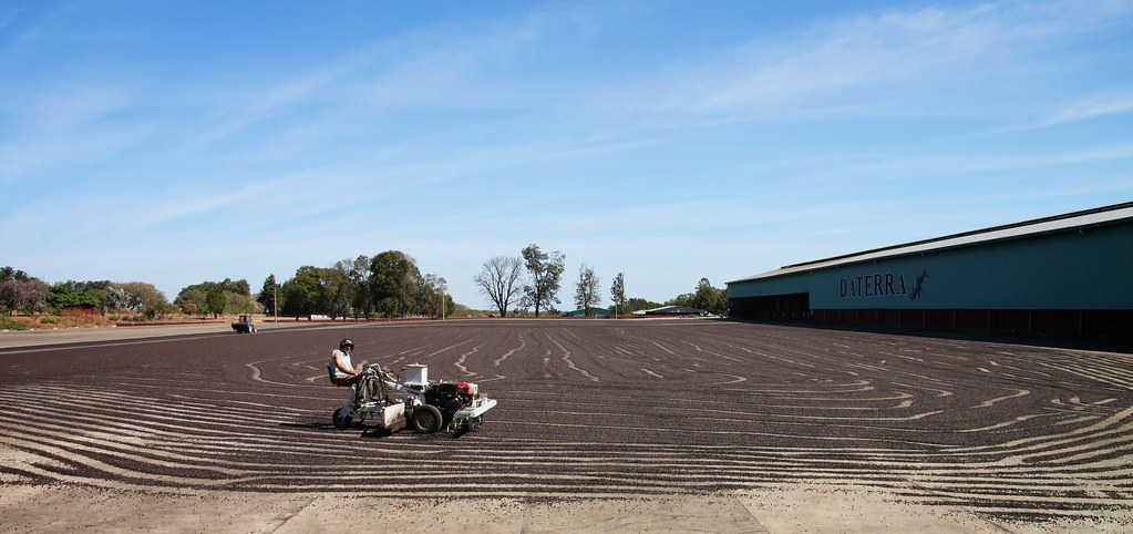 Daterra drying patio.