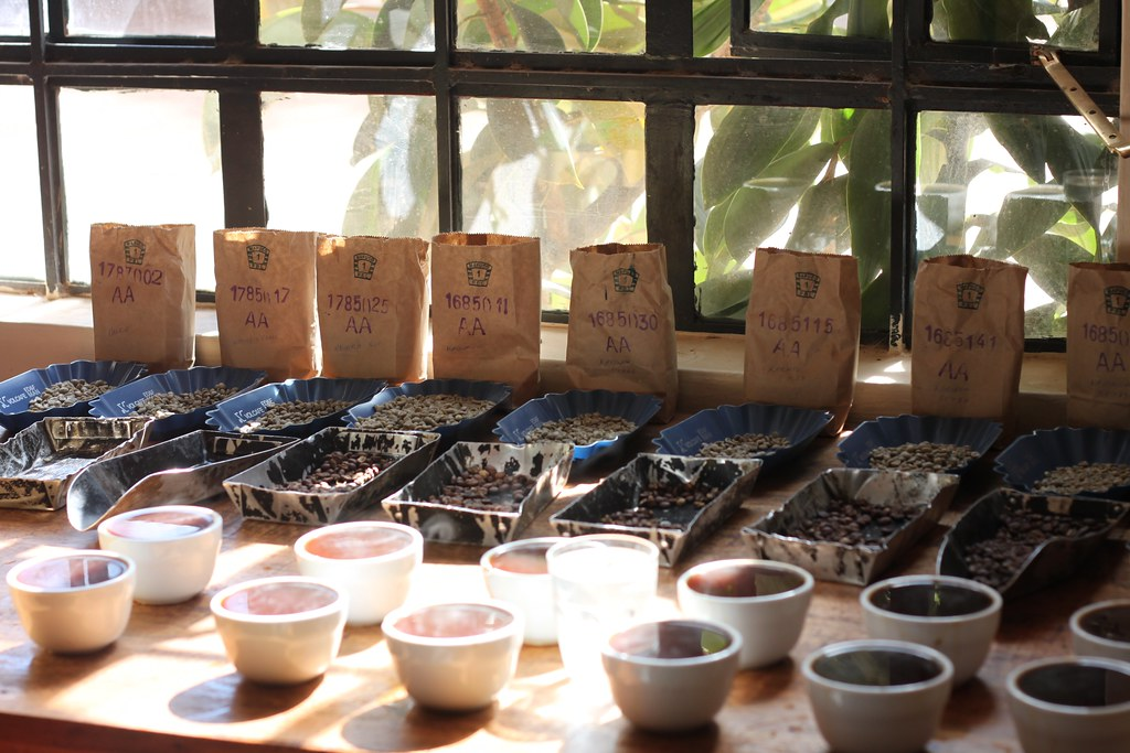 Morning cupping