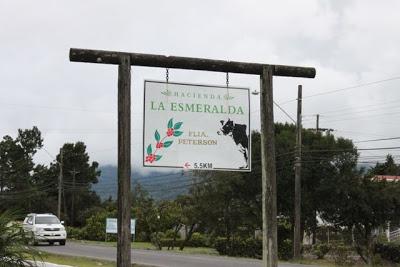 Hacienda La Esmeralda 2010