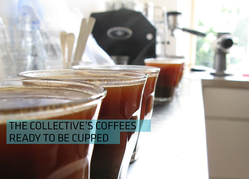 Open Cupping at The Coffee Collective