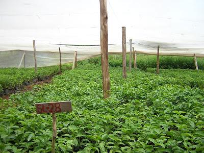 Kenya 2009 Part 3