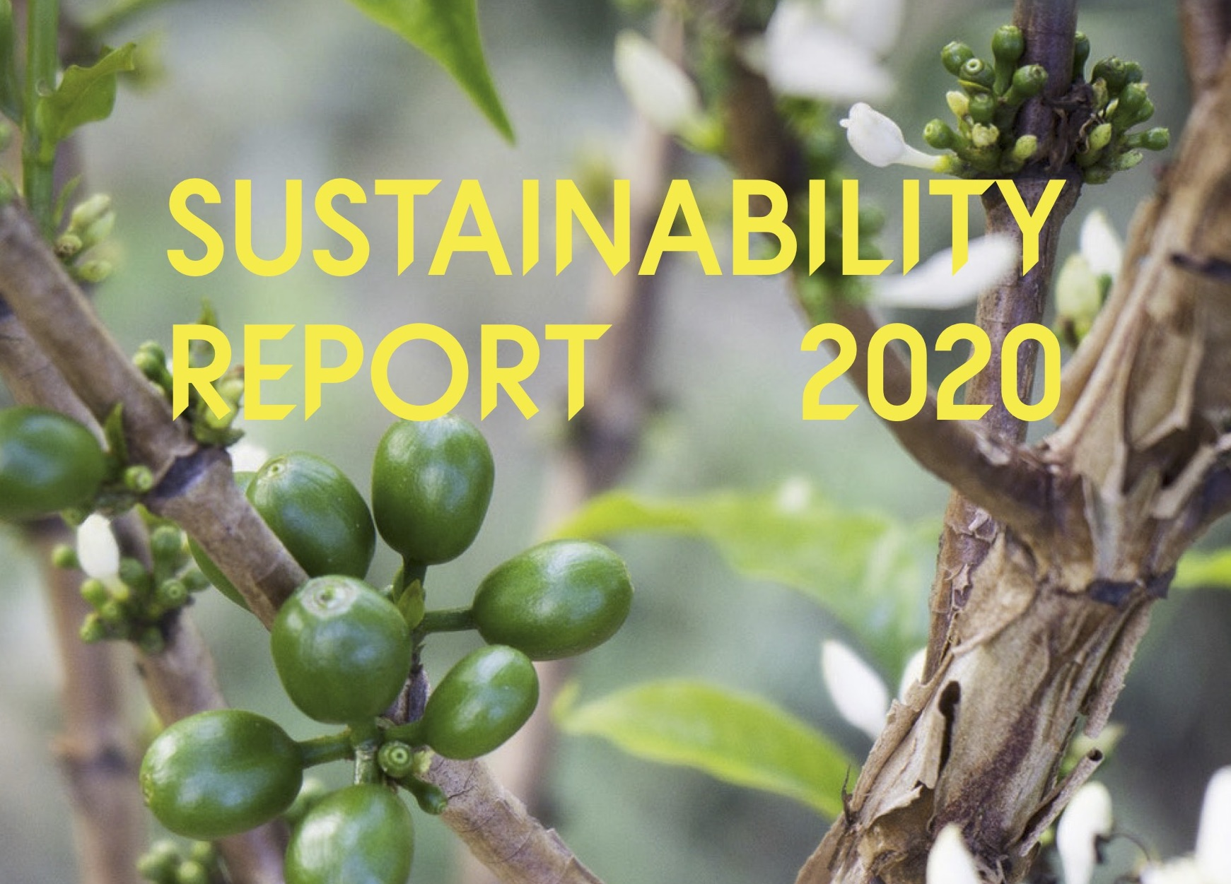Read the 2020 Sustainability Report in link below