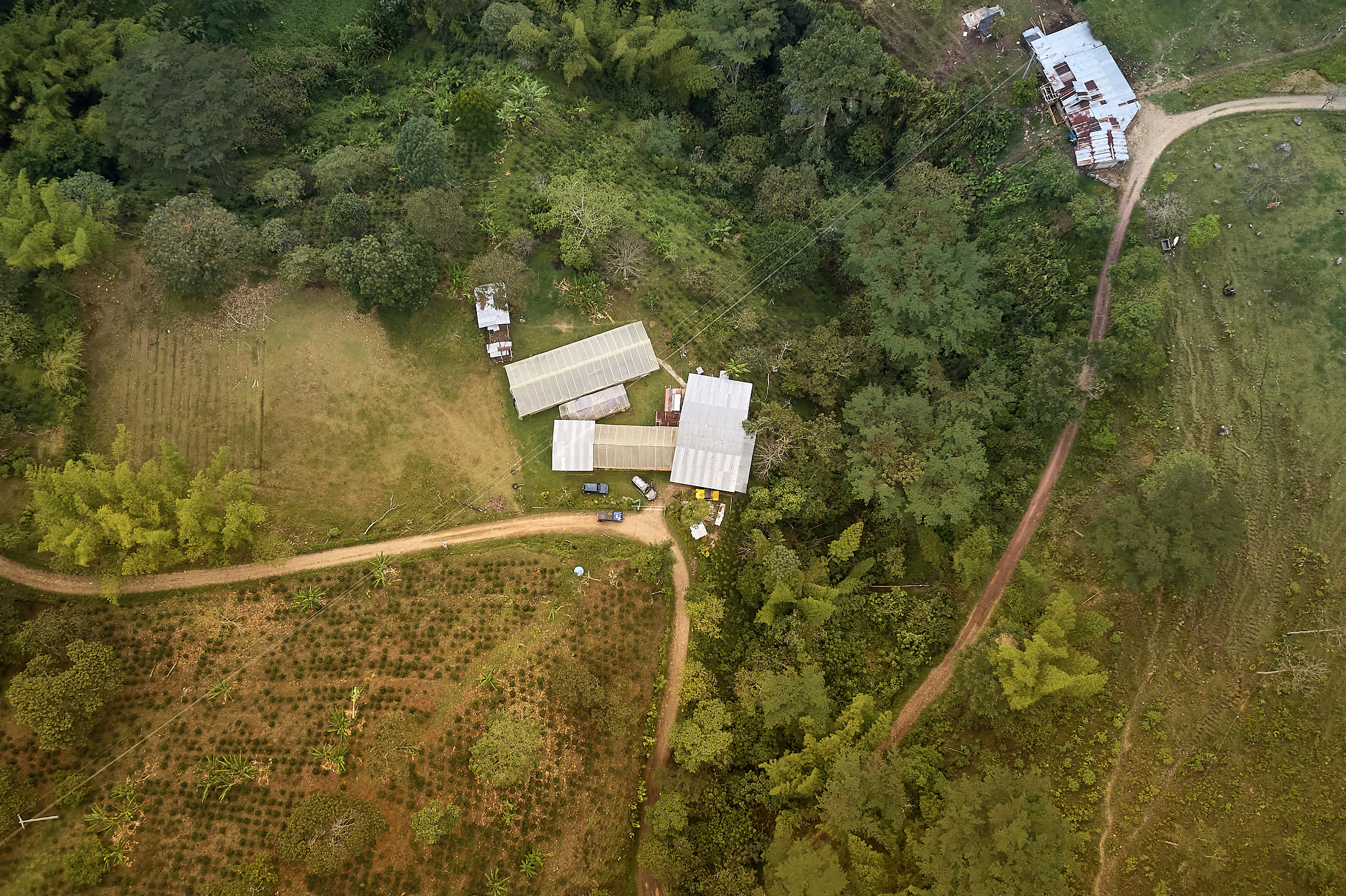 Their farm seen from above