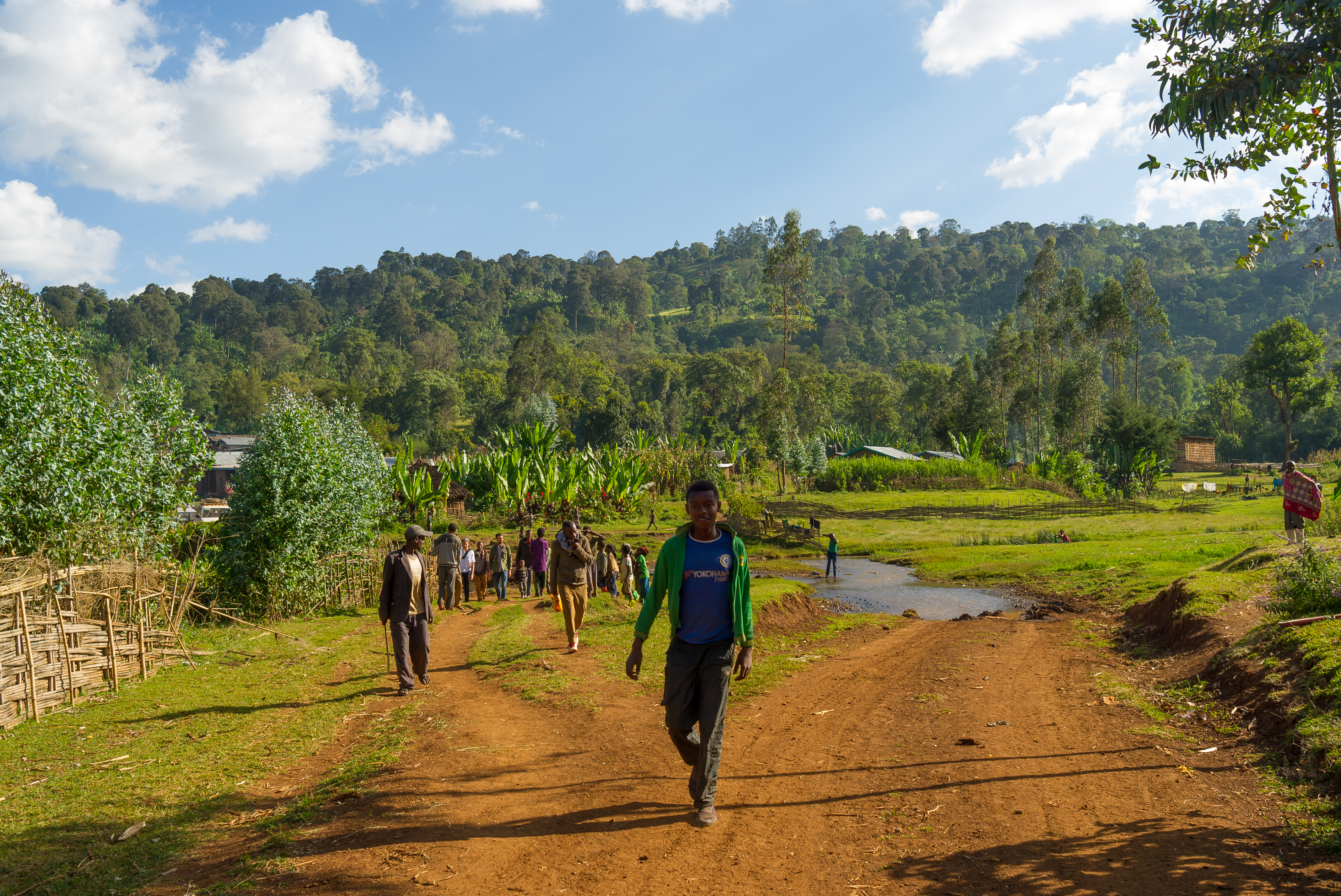 A beautiful scenery stands in contrast to the terrible situation in Ethiopia at the moment