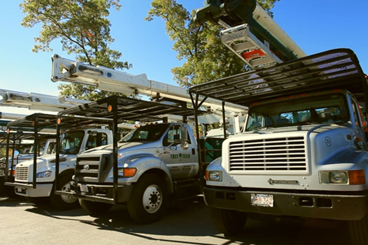 1507237145 tree tech inc photo 516pxtree tech inc photo 516px